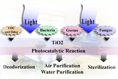 TiO2 Photocatalytic Reaction